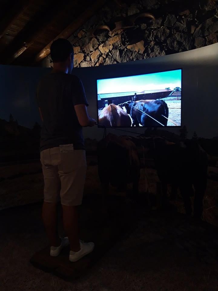 Ecomuseo interactivo la guancha