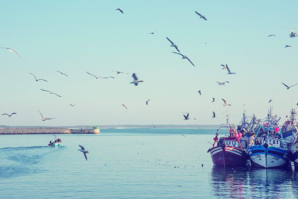 agadir puerto